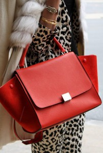 animal-print-street-style-luxe-style