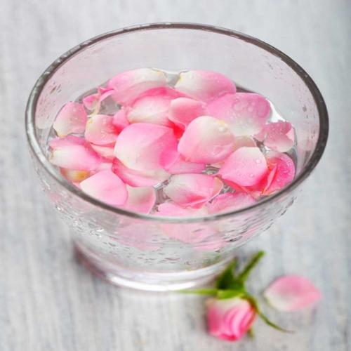 Beneficiile apei de trandafiri