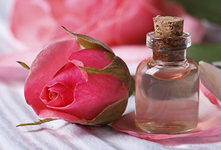 Rose water and pink beautiful flower macro horizontal